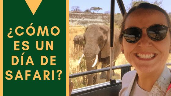Como Es Un Día De Safari(1)
