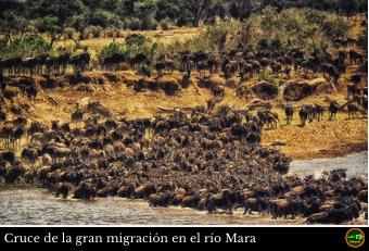 Cruce Mara