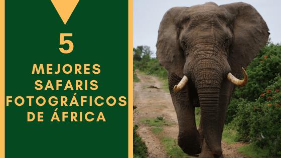 Mejores Safaris Africa