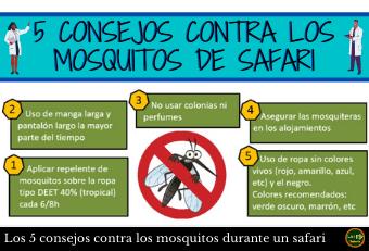 Mosquitos Consejos Safari