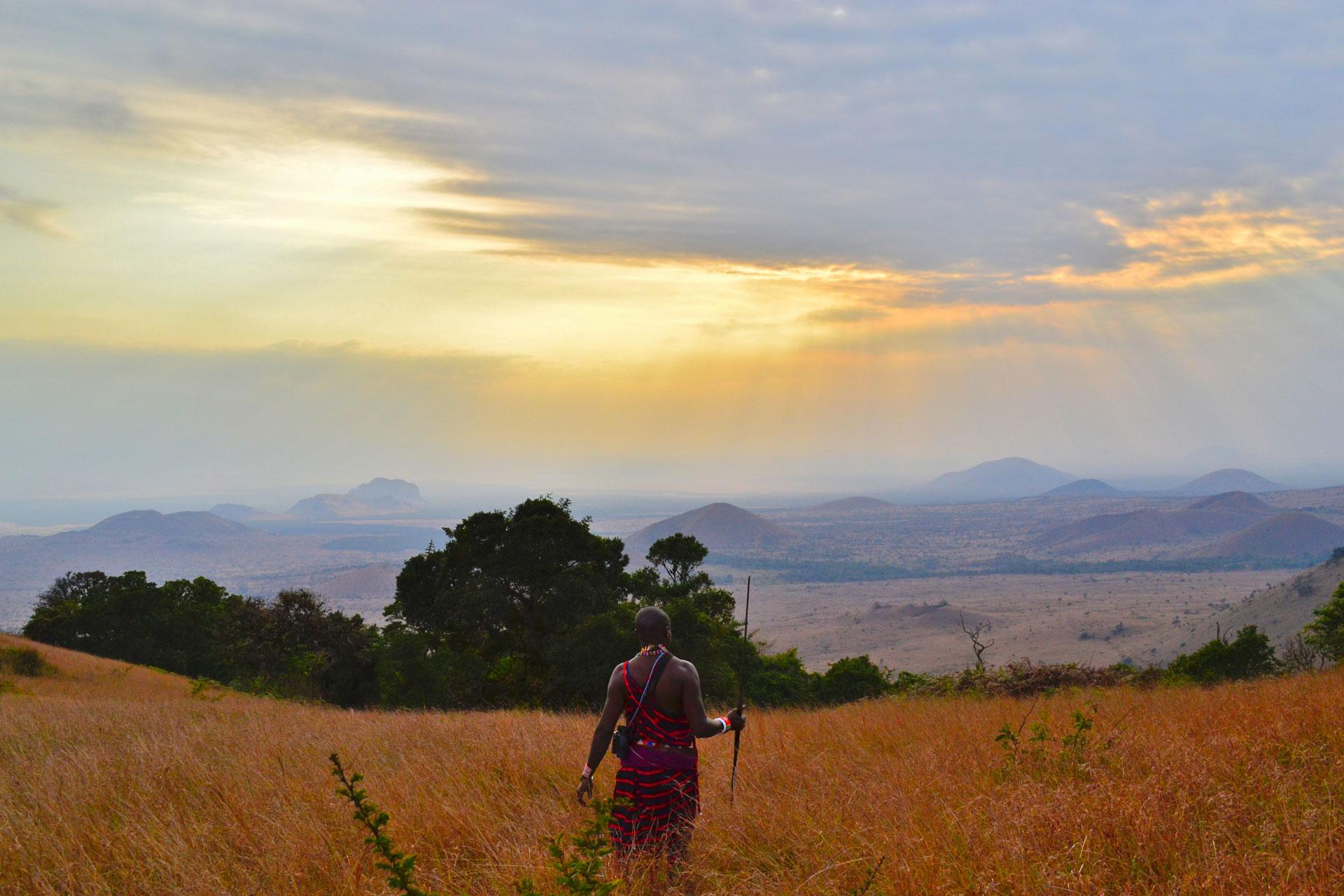 Safari Tanzania - Origen