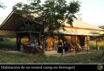 Tented Camp